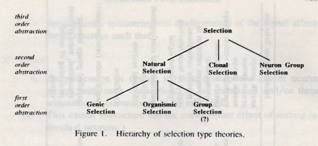 Selection Type Theories